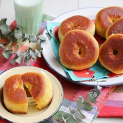 ドーナツ/チーズ/さけるチーズ/マリンフード/朝ごはん/おやつ/... ホットケーキミックスで作った生地の中にさ…