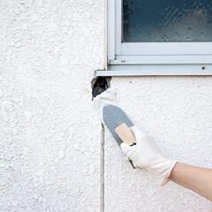 DIY/簡単DIY/住まい/リフォーム/住宅設備/一戸建て/... ブロック、レンガ、タイル目地、屋根瓦の漆…(1枚目)