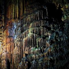 秋芳洞/山口県/鍾乳洞/おでかけワンショット 秋芳洞で幾重にも連なる鍾乳石を撮影しまし…