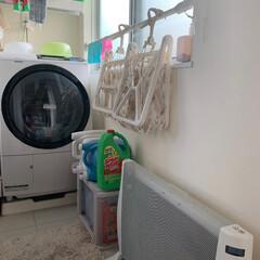 洗濯室兼脱衣室 我が家の洗濯室兼脱衣室。 夜行バスで、今…