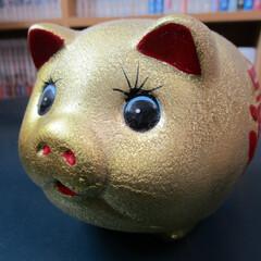 ブタの貯金箱/ブタ/動物モチーフグッズ 豚の貯金箱 100円玉、10枚しか入れて…