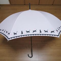梅雨/梅雨対策/雨対策/梅雨対策アイテム/梅雨便利グッズ ネコちゃん模様の傘