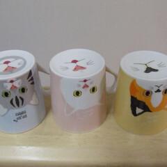 マグカップ/ダイソー/あなたのオススメ100均グッズ ダイソーで買ったネコちゃん柄のマグカップ