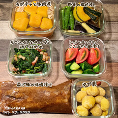 レシピ/夕飯/生活の知恵/おうちごはん/お弁当/節約/... 《作り置き》 この日は少しだけ作り置き…