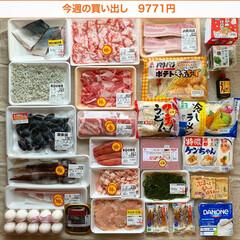 冷凍保存/わたしのごはん/下処理/1週間1万円/買い物/夕飯/... 《8/6〜8/12の買い出し&夕飯》 先…