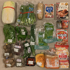 買い出し/買い物/1週間1万円/レシピ/夕飯/メニュー/... 《10/15〜21の買い出し&夕飯》  …(2枚目)