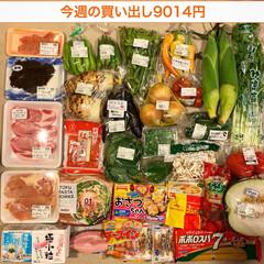 冷凍保存/1週間1万円/買い物/夕飯/おうちごはん/節約/... 《8/20〜26の買い出し&夕飯》 午前…