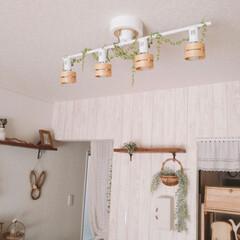 模様替え/板壁風壁紙/サンゲツの壁紙/シーリングライト/シンプルナチュラル/ナチュラルキッチン/... シーリングライトにラダーを掛けてましたが…