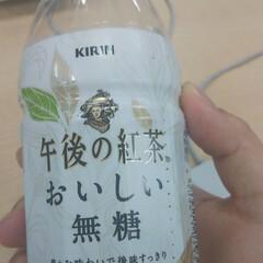 午後の紅茶 500ml 24本入 ペットボトル お茶 紅茶 キリン おいしい無糖 キリンビバレッジ(ミネラルウォーター、水)を使ったクチコミ(1枚目)