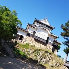 備中松山城/おでかけワンショット 備中松山城で撮った1枚です。