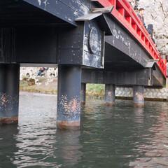 弘前城公園/橋/桜/ボート/はじめてフォト投稿 弘前城公園ボート乗り場の橋の下から #は…
