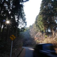 松島/太陽/車のブレ/宮城県/はじめてフォト投稿 松島の坂の上のカフェまで徒歩40分  遠…