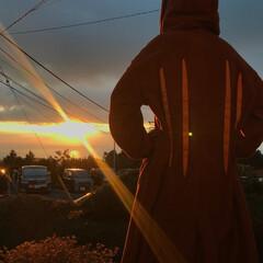 箱根/おでかけワンショット 2019年 元旦 #おでかけワンショット
