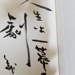 サイン/わたしのお気に入り 藤本義一という作家さんのサイン本です。
