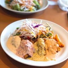 宮崎/郷土料理/チキン南蛮/わたしのごはん 宮崎の郷土料理 チキン南蛮です。