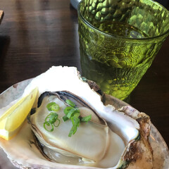 lunch/海辺/牡蠣/わたしのごはん 海辺でlunch