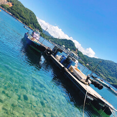 夏のお気に入り/海/日本海/釣り/船/筏釣り 夏の海 青空の下で釣り🎣