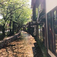 おでかけワンショット/京都/風情/お散歩 癒しの空間