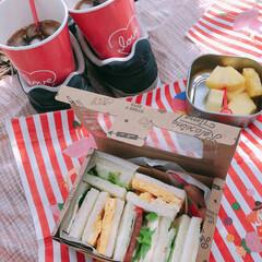ピクニック/わたしのごはん ピクニックに手作りサンドイッチ!