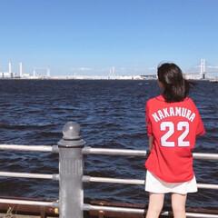 カープ/広島/野球/わたしのお気に入り 広島東洋カープが大好きです。 静岡に住ん…