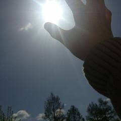ブルー 太陽捕まえた☀