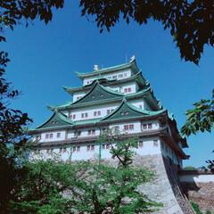名古屋城/おでかけワンショット/はじめてフォト投稿 5/24  ムムム!やっと城が見えたゾ!…
