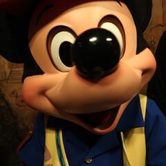 ディズニー/ディズニーランド/ディズニーシー/ミッキー/ミニー/オリエンタルランド/... 初めてのグリーティング。  #はじめてフ…