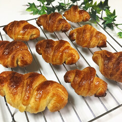 パン/手作り/朝食/クロワッサン/こんがりグルメ/おやつタイム/... 手作りクロワッサン . 生地から手作りで…