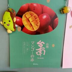 至福のひととき 図書館でゆっくりと #台湾展示