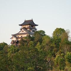 犬山/城/おでかけワンショット 犬山城