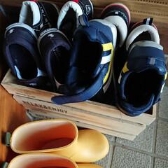 靴の収納 現在2才の息子の靴達はとても小さく 中々…