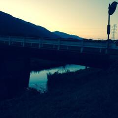 散歩道/日暮れ/おでかけワンショット