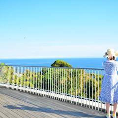 お散歩/お写ん歩/夏/江ノ島/春/海/... 江ノ島でカメラを持ってお散歩。きれいな写…