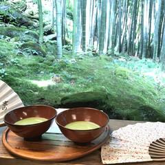 竹林/甘味処/自然/鎌倉/散歩/おでかけワンショット 竹林を散歩している途中、甘味処を見つけて…