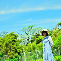 江ノ島/麦わら帽子/散歩/青空/自然/おでかけワンショット お気に入りの麦わら帽子をかぶって江ノ島を…