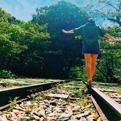 蹴上インクライン/線路/夏/緑/青空/パシャリ!おでかけワンショット/... 京都の蹴上インクラインでの写真です。 ど…
