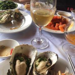ハロン湾/ベトナム/牡蠣/白ワイン/ベトナム料理/生牡蠣/... ベトナム、ハロン湾でのひと時です。 地元…