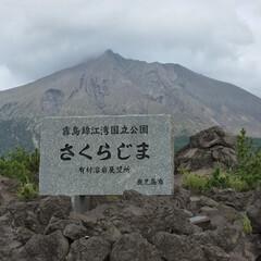 鹿児島/桜島/道の駅 桜島に来ました。 風が強いせいか、灰がす…