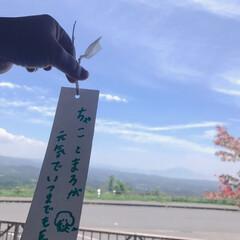 道の駅/いつまでも一緒に/お出かけ 七夕の日🎋に桜島に願い事を書く
