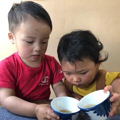 おでかけワンショット 暑い中お茶を分け合う姉、弟