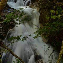 照葉峡/滝 照葉峡の写真です。 照葉峡は関東の奥入瀬…(1枚目)