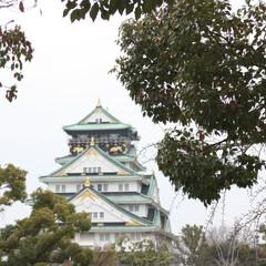 大阪城/おでかけワンショット/はじめてフォト投稿 木々の間から