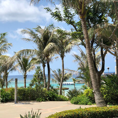 海/南国/南国ビーチ/沖縄/自然/絶景/... 南国へようこそ