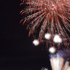 カメラ/一眼レフ/Canon/カウントダウン/お正月/謹賀新年/... 明けましておめでとうございます。すっかり…(3枚目)