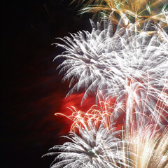 カメラ/一眼レフ/Canon/カウントダウン/お正月/謹賀新年/... 明けましておめでとうございます。すっかり…(2枚目)