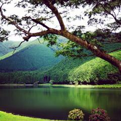 おでかけワンショット/新緑/湖/湖畔/自然 自然の中へおでかけワンショット。 清々し…