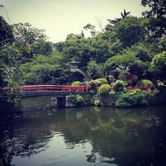 おでかけワンショット/庭園/紫陽花 ほっと心安らぐ場所へおでかけワンショット…