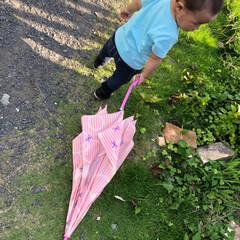 1歳ベビー/1歳児/丸坊主/散歩アイテム/傘/散歩/... 息子のお気に入り 晴れの日にでも傘を持ち…