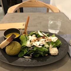 わたしお気に入り/わたしのお気に入り 新鮮で安全な野菜を使った広島のベジタブル…