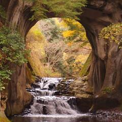 濃溝の滝/亀岩の洞窟/はじめてフォト投稿 亀岩の洞窟。 濃溝の滝。 (1枚目)